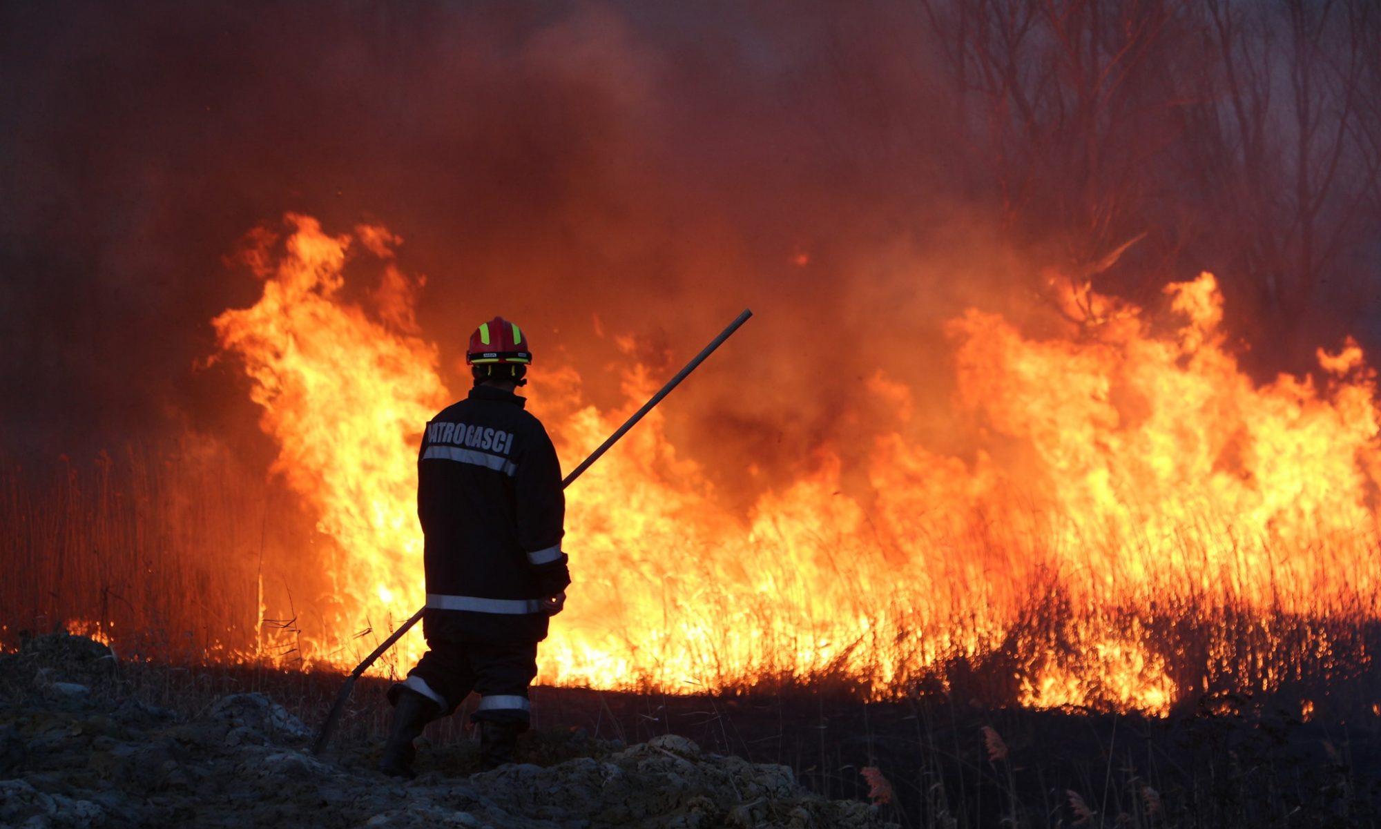 Vatrogasci - Bilje